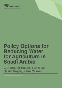 Policy Options for Reducing Water for Agriculture in Saudi Arabia